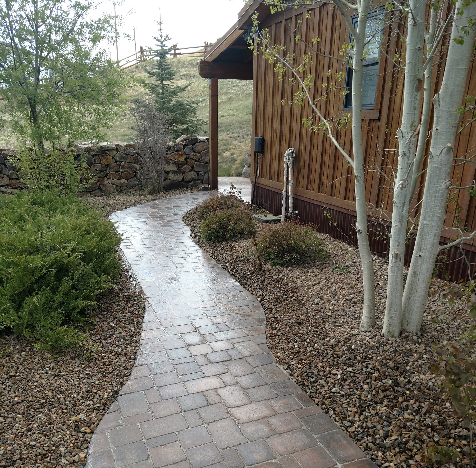 Paver walkway with tree and shrub planting in Divide, Colorado